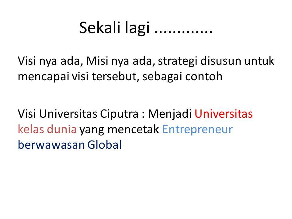 Sekali lagi............. Visi nya ada, Misi nya ada, strategi disusun untuk mencapai visi tersebut, sebagai contoh Visi Universitas Ciputra : Menjadi