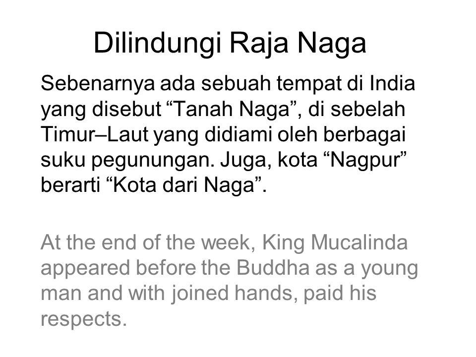 "Dilindungi Raja Naga Sebenarnya ada sebuah tempat di India yang disebut ""Tanah Naga"", di sebelah Timur–Laut yang didiami oleh berbagai suku pegunungan"