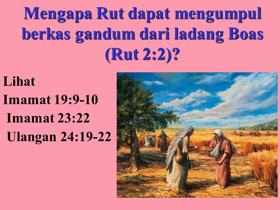 Mengapa Rut dapat mengumpul berkas gandum dari ladang Boas (Rut 2:2)? Lihat Imamat 19:9-10 Imamat 23:22 Ulangan 24:19-22