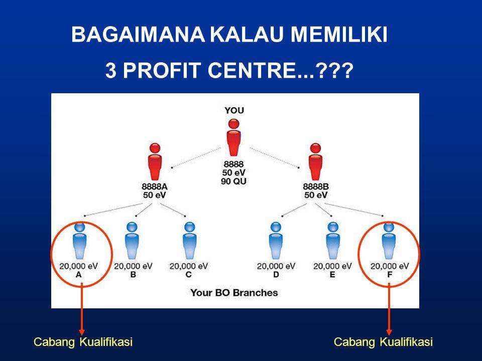 BAGAIMANA KALAU MEMILIKI 3 PROFIT CENTRE...??? Cabang Kualifikasi