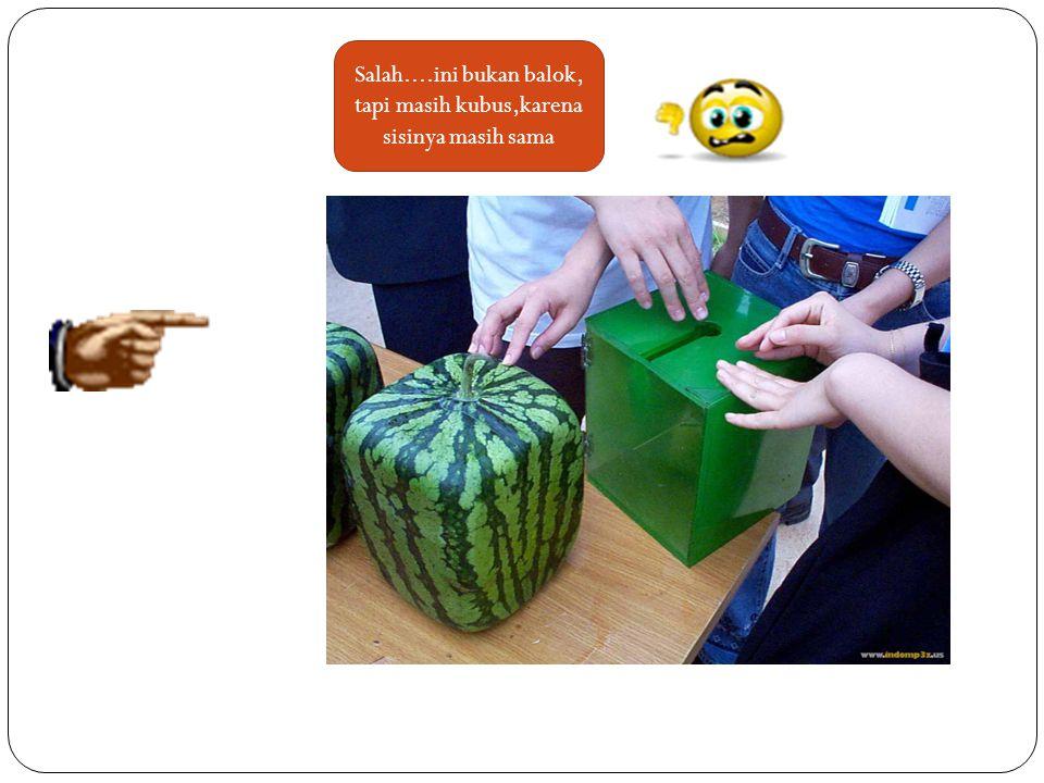 Coba kalian lihat gambar berikut ini : Ini juga melon berbentuk kubus Ini adalah celengen berbentuk kubus