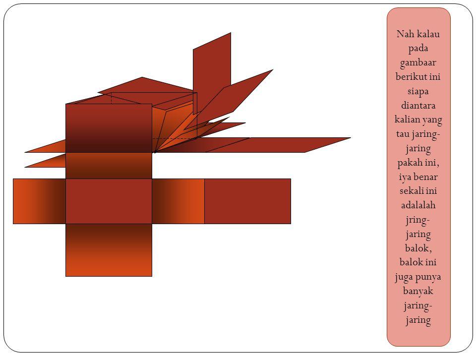 Taukah kalian jaring-jaring apa ini, ?...nah ini adalah jaring-jaring kubus…nah banyak lagi bentuk jaring-jaring kubus yang nantinya harus kalian temu