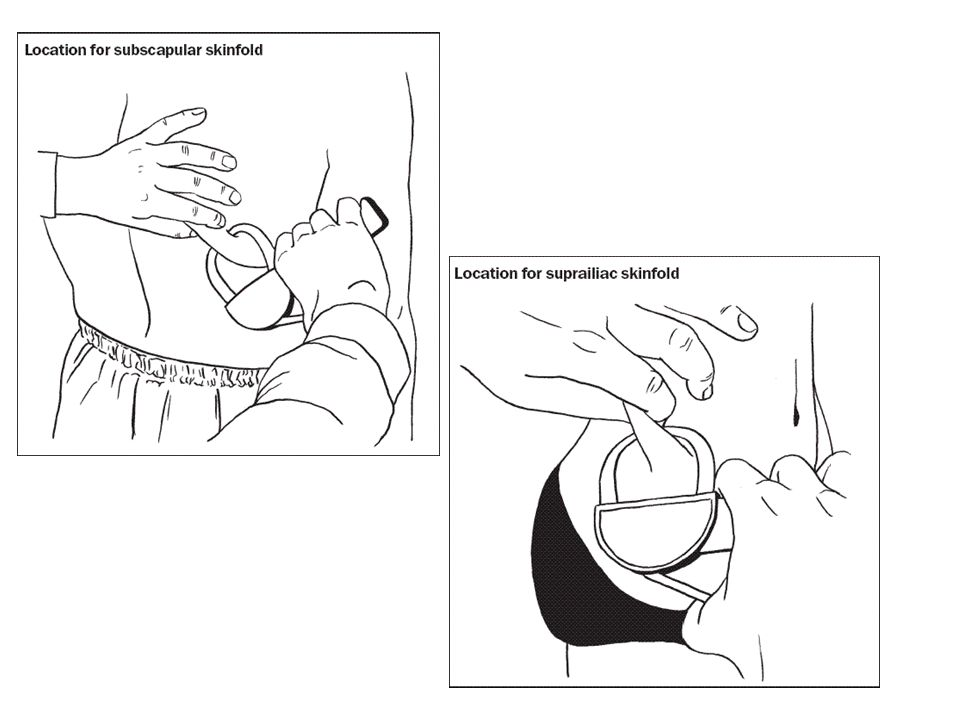 31 Tebal lipatan kulit untuk menilai tebalnya lemak subkutan menggunakan Harpenden skinfold caliper Dilakukan pada daerah triseps, biceps, subscapula