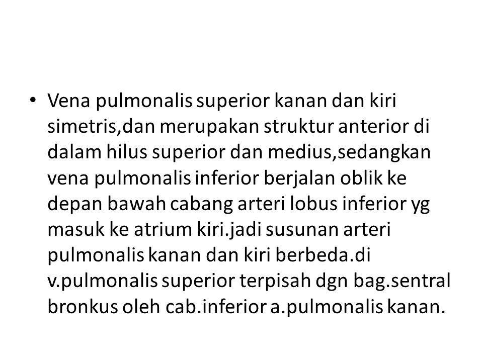 Vena pulmonalis superior kanan dan kiri simetris,dan merupakan struktur anterior di dalam hilus superior dan medius,sedangkan vena pulmonalis inferior