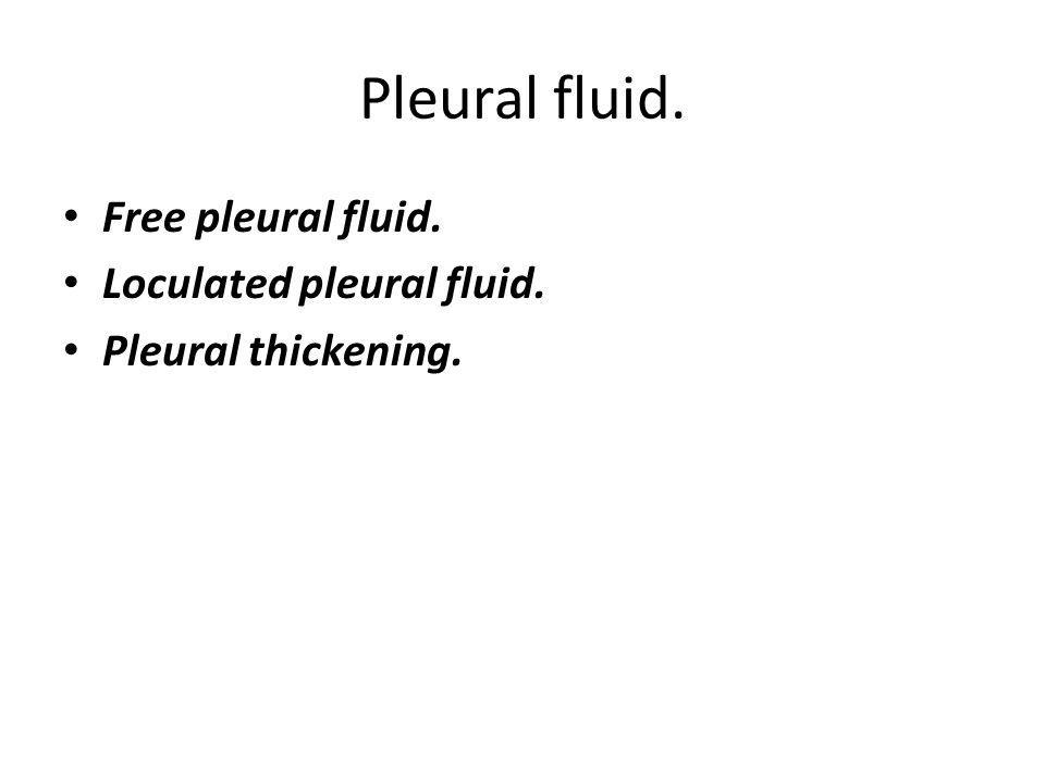 Pleural fluid. Free pleural fluid. Loculated pleural fluid. Pleural thickening.