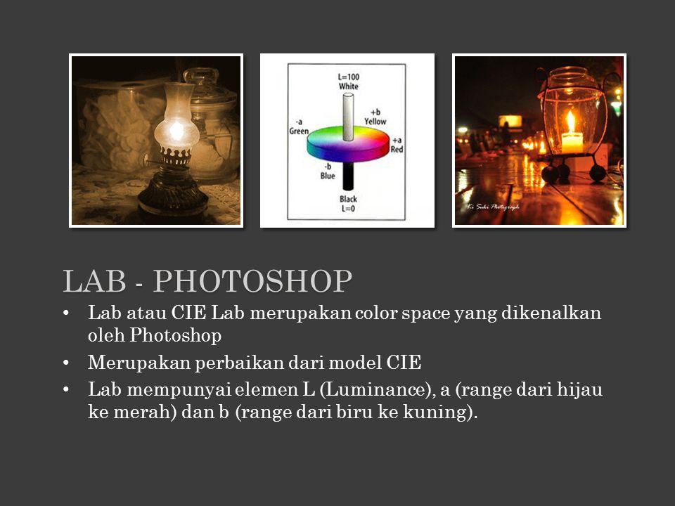 Lab atau CIE Lab merupakan color space yang dikenalkan oleh Photoshop Merupakan perbaikan dari model CIE Lab mempunyai elemen L (Luminance), a (range
