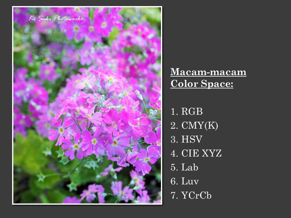 Sebuah range yang menyatakan batasan- batasan warna yang bisa dihasilkan oleh setiap color space.