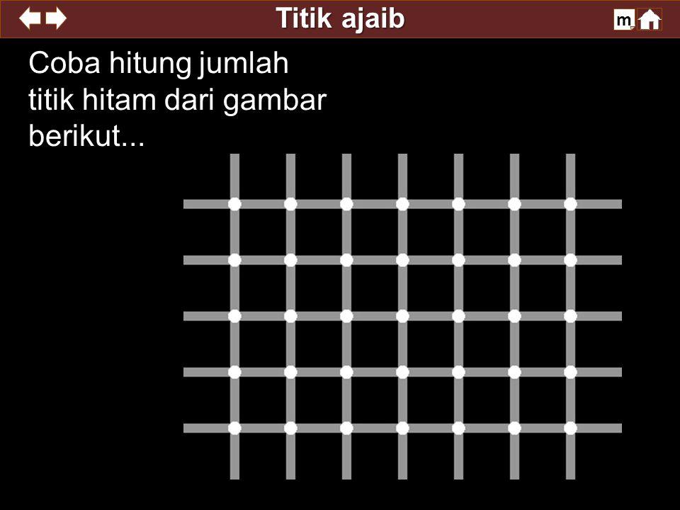 Titik ajaib m Coba hitung jumlah titik hitam dari gambar berikut...