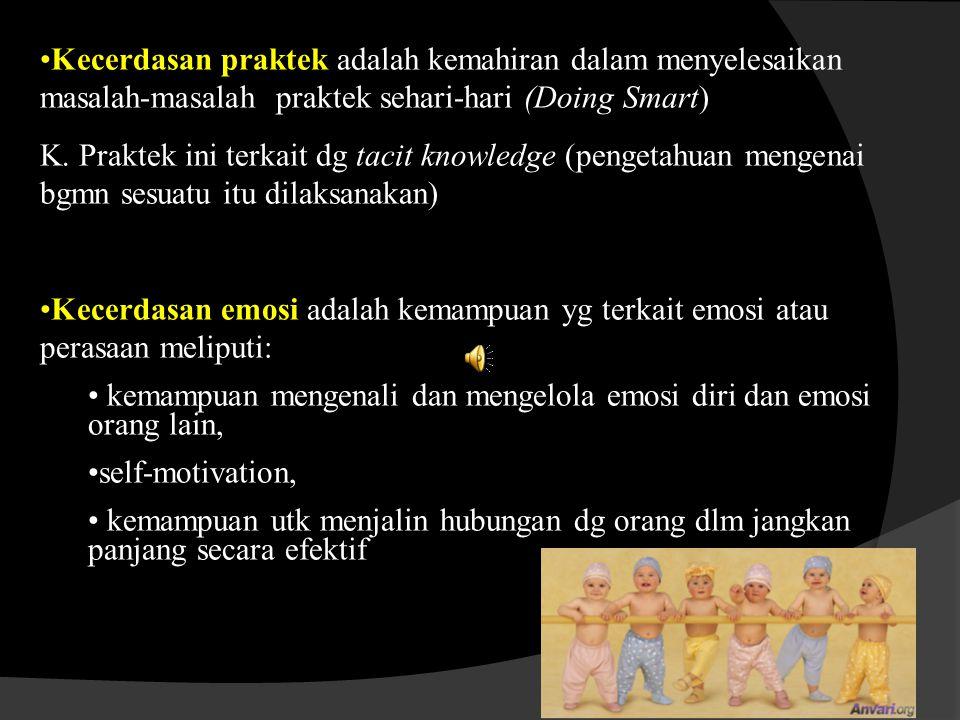 Kecerdasan praktek adalah kemahiran dalam menyelesaikan masalah-masalah praktek sehari-hari (Doing Smart) K.