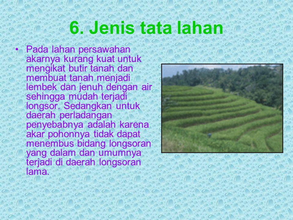 6. Jenis tata lahan Pada lahan persawahan akarnya kurang kuat untuk mengikat butir tanah dan membuat tanah menjadi lembek dan jenuh dengan air sehingg