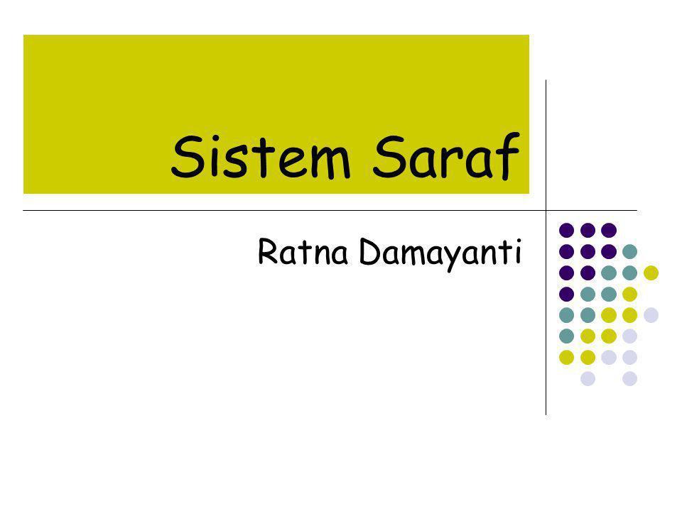 SARAF MOTORIK = SARAF EFFERENT Membawa informasi keluar SSP ke organ sasaran (sel otot atau kelenjar).
