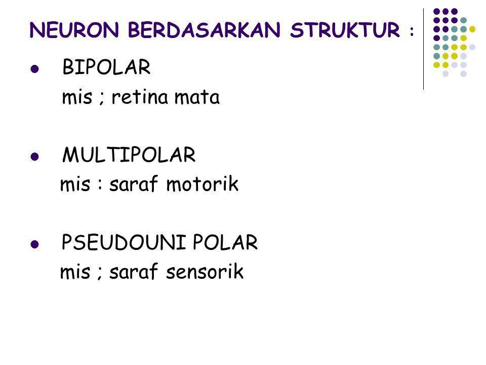 NEURON BERDASARKAN STRUKTUR : BIPOLAR mis ; retina mata MULTIPOLAR mis : saraf motorik PSEUDOUNI POLAR mis ; saraf sensorik