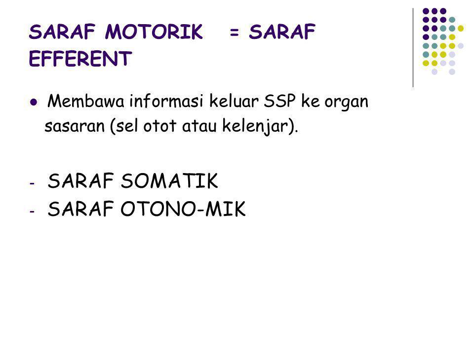 SARAF MOTORIK = SARAF EFFERENT Membawa informasi keluar SSP ke organ sasaran (sel otot atau kelenjar). - SARAF SOMATIK - SARAF OTONO-MIK