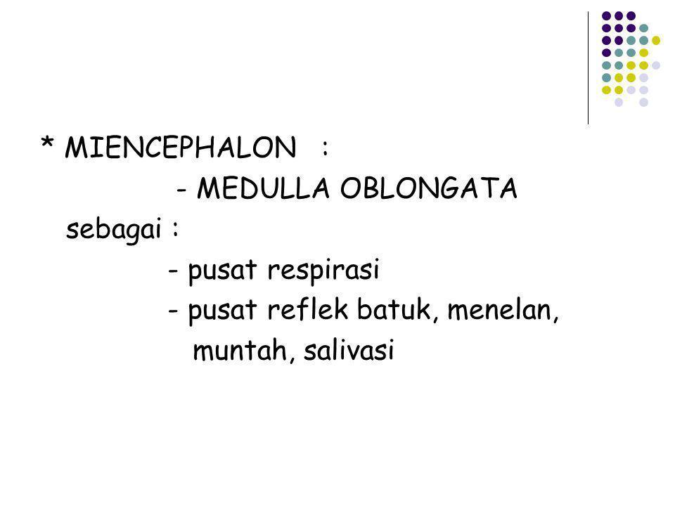 * MIENCEPHALON : - MEDULLA OBLONGATA sebagai : - pusat respirasi - pusat reflek batuk, menelan, muntah, salivasi