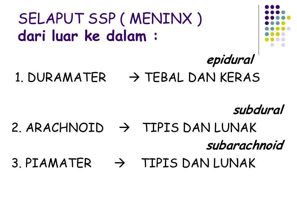 SELAPUT SSP ( MENINX ) dari luar ke dalam : epidural 1. DURAMATER  TEBAL DAN KERAS subdural 2. ARACHNOID  TIPIS DAN LUNAK subarachnoid 3. PIAMATER 