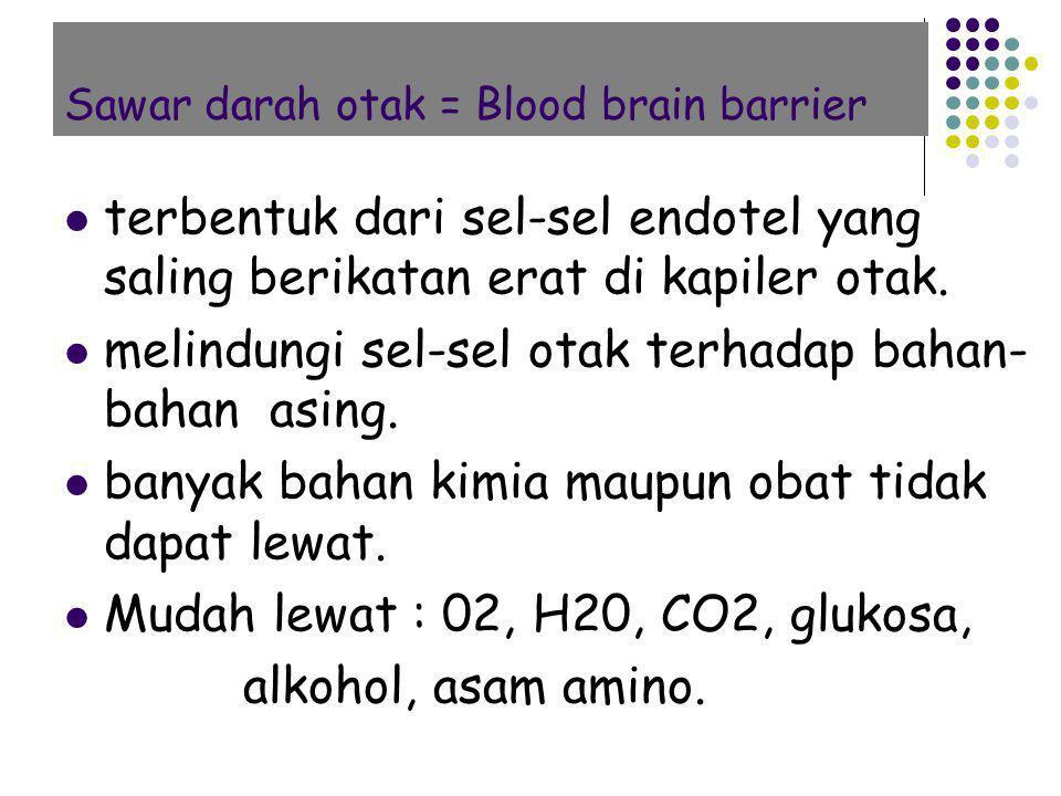 Sawar darah otak = Blood brain barrier terbentuk dari sel-sel endotel yang saling berikatan erat di kapiler otak. melindungi sel-sel otak terhadap bah