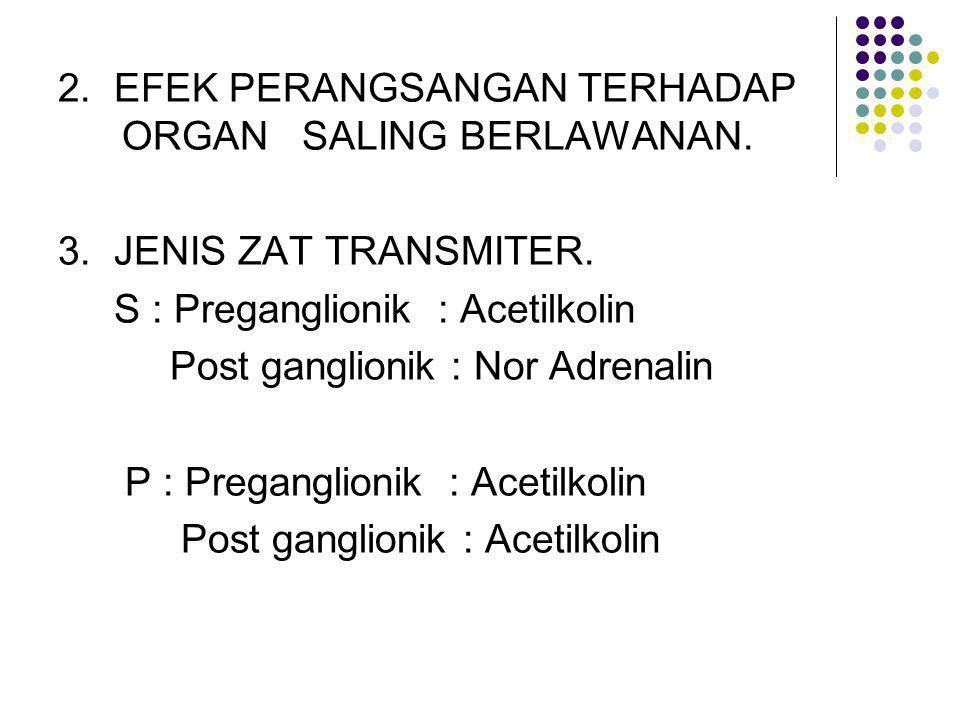 2. EFEK PERANGSANGAN TERHADAP ORGAN SALING BERLAWANAN. 3. JENIS ZAT TRANSMITER. S : Preganglionik : Acetilkolin Post ganglionik : Nor Adrenalin P : Pr