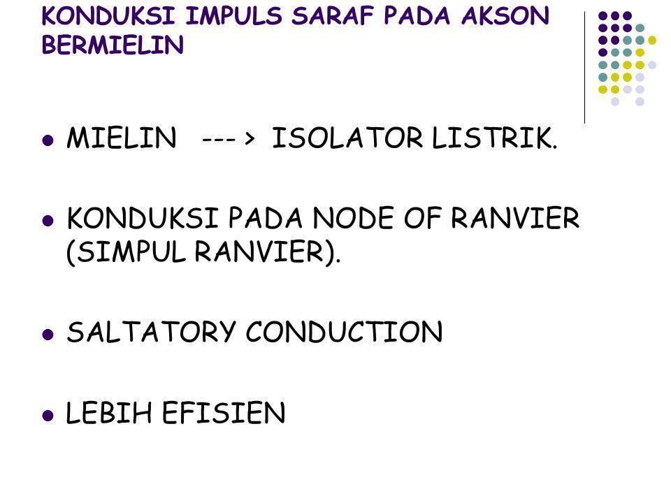 KONDUKSI IMPULS SARAF PADA AKSON BERMIELIN MIELIN --- > ISOLATOR LISTRIK. KONDUKSI PADA NODE OF RANVIER (SIMPUL RANVIER). SALTATORY CONDUCTION LEBIH E