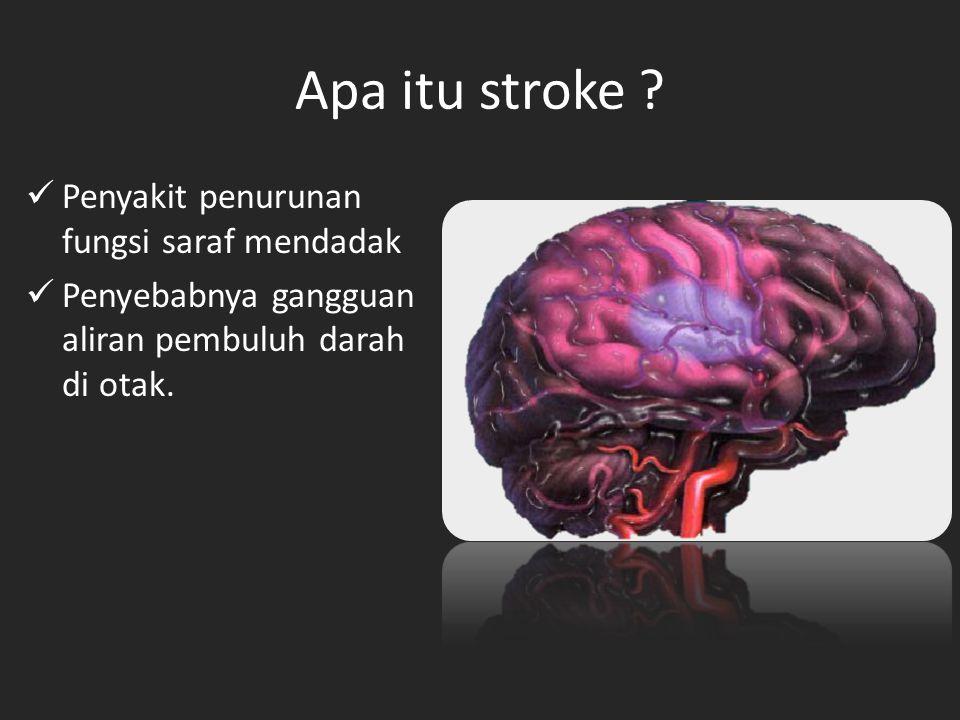 Apa itu stroke .