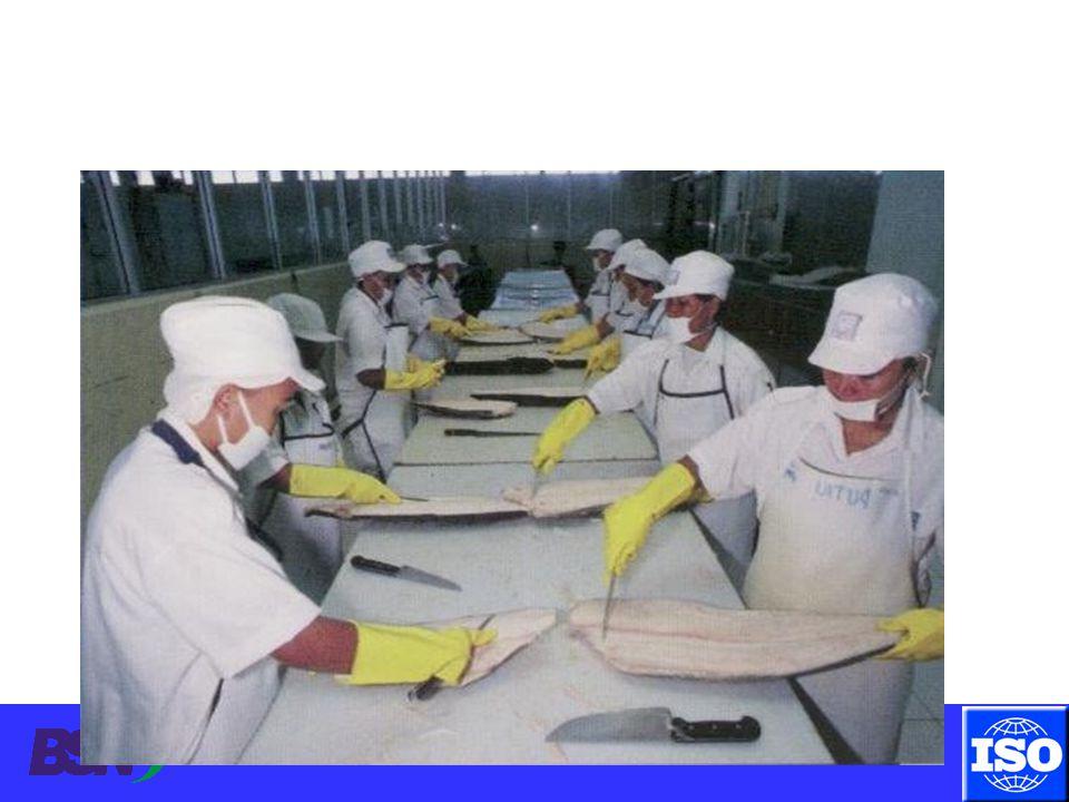 Sanitasi Peralatan Poor cleaning practices Timbangan kotor, kontaminasi silang.
