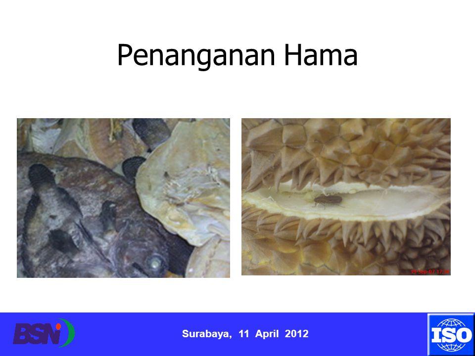 Surabaya, 11 April 2012 Penanganan Hama