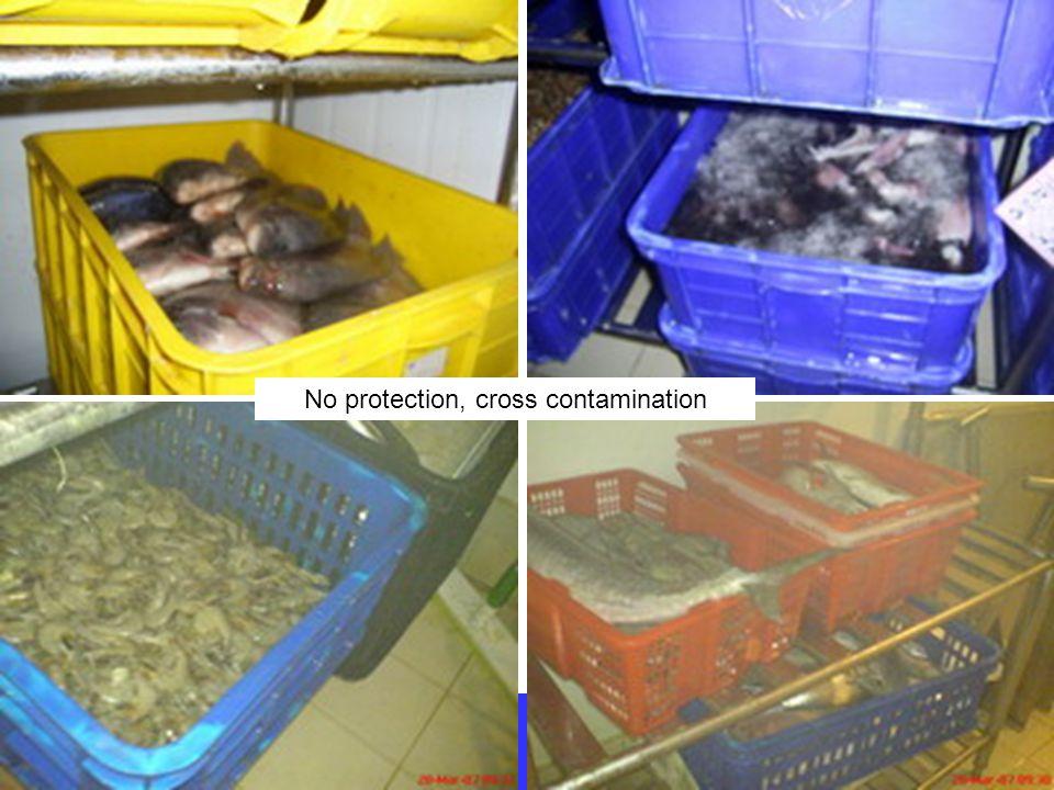 Surabaya, 11 April 2012 No protection, cross contamination
