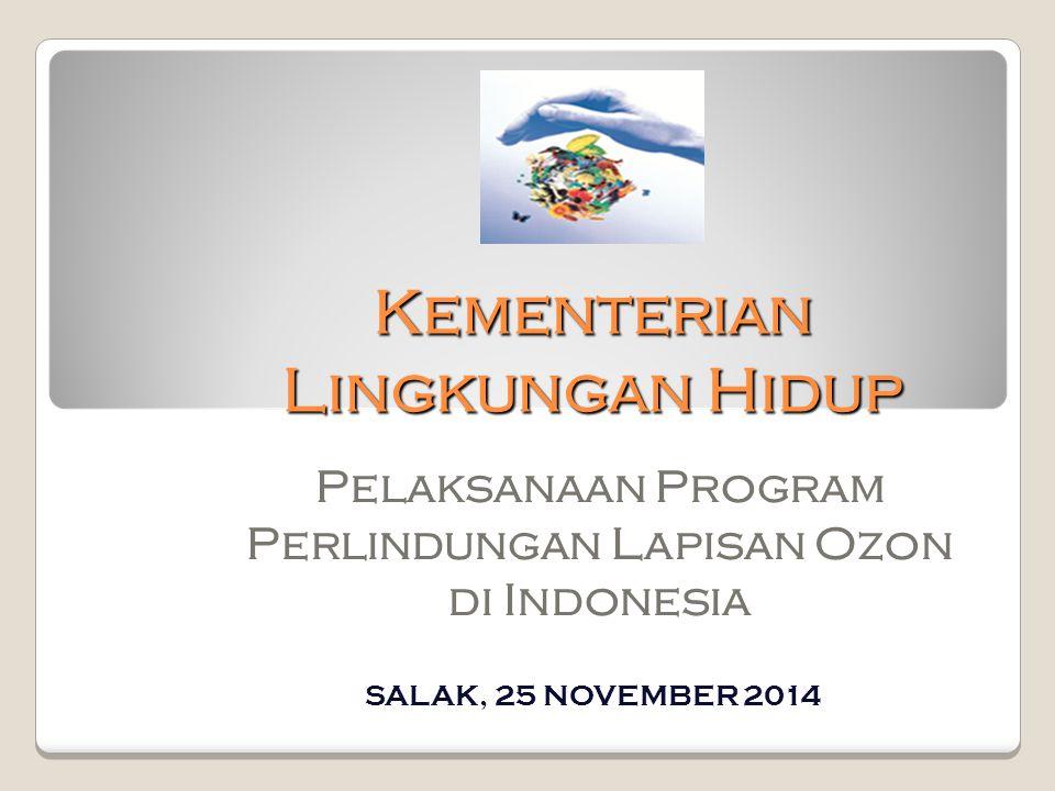 Kementerian Lingkungan Hidup Pelaksanaan Program Perlindungan Lapisan Ozon di Indonesia SALAK, 25 NOVEMBER 2014