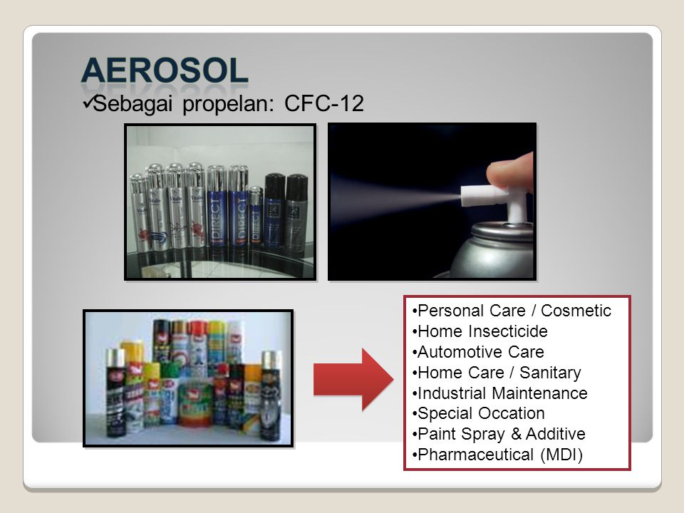 Personal Care / Cosmetic Home Insecticide Automotive Care Home Care / Sanitary Industrial Maintenance Special Occation Paint Spray & Additive Pharmace