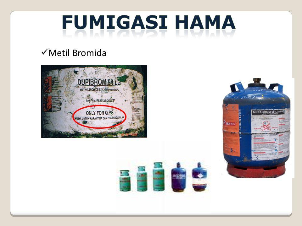 Metil Bromida