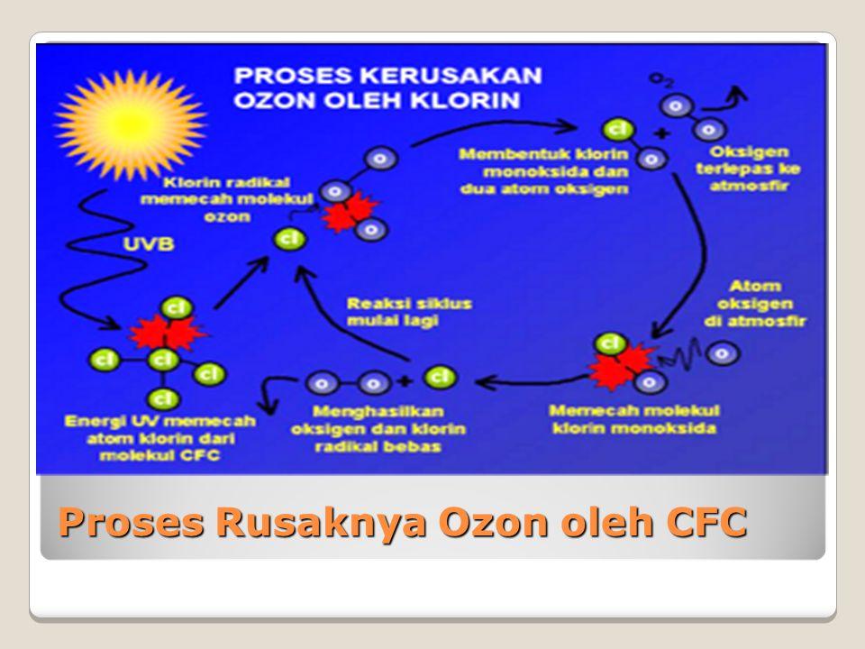 Proses Pembentukan Ozon