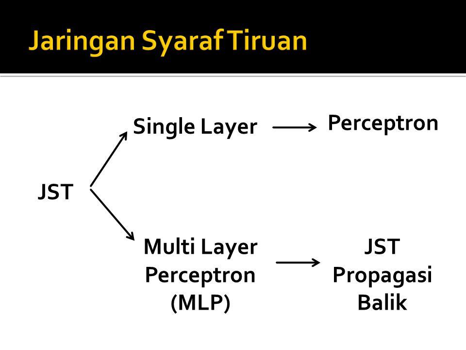 JST Single Layer Multi Layer Perceptron (MLP) JST Propagasi Balik Perceptron