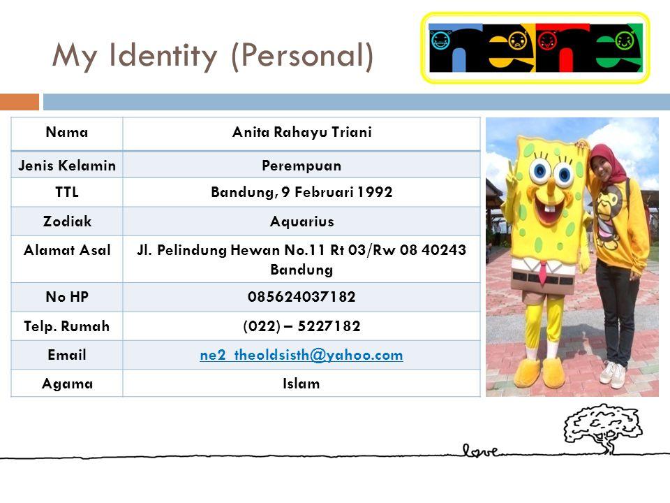 My Identity (Personal) NamaAnita Rahayu Triani Jenis KelaminPerempuan TTLBandung, 9 Februari 1992 ZodiakAquarius Alamat AsalJl.
