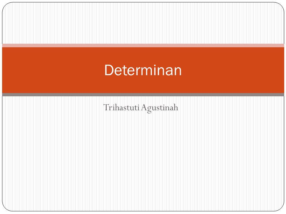Trihastuti Agustinah Determinan