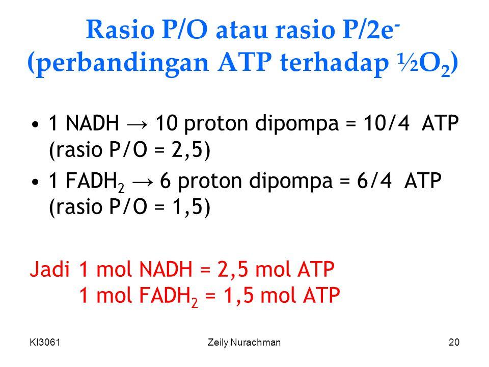 KI3061Zeily Nurachman20 Rasio P/O atau rasio P/2e - (perbandingan ATP terhadap ½O 2 ) 1 NADH → 10 proton dipompa = 10/4 ATP (rasio P/O = 2,5) 1 FADH 2 → 6 proton dipompa = 6/4 ATP (rasio P/O = 1,5) Jadi 1 mol NADH = 2,5 mol ATP 1 mol FADH 2 = 1,5 mol ATP