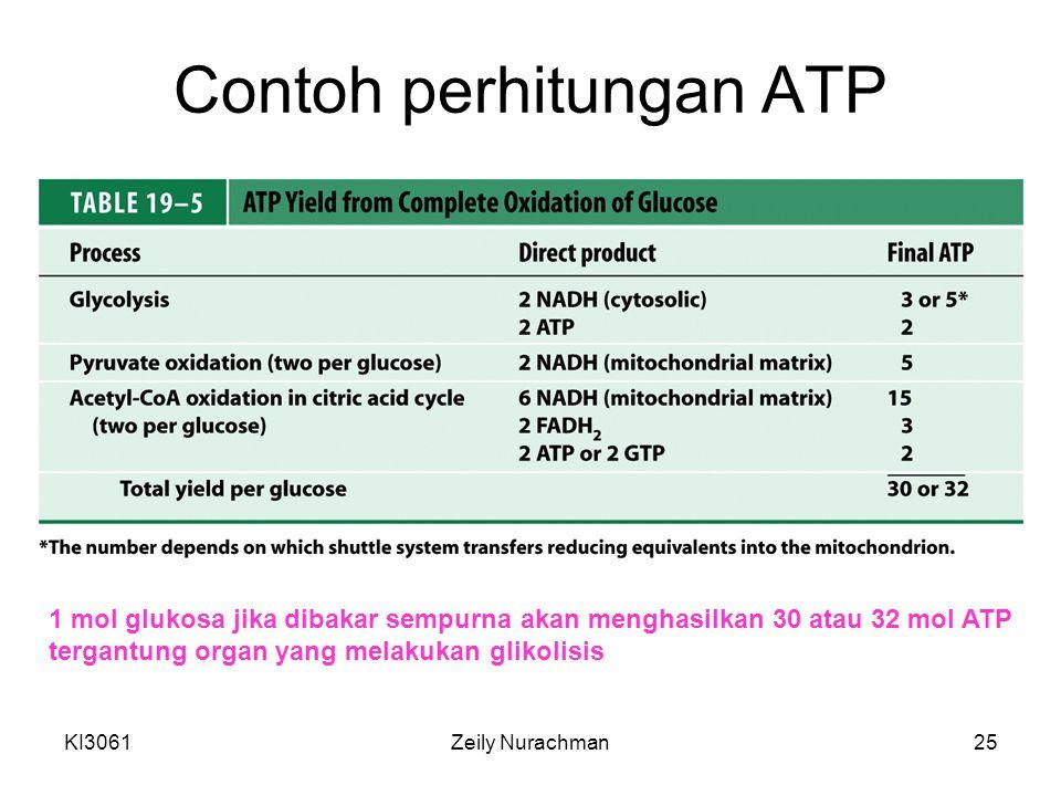 KI3061Zeily Nurachman25 Contoh perhitungan ATP 1 mol glukosa jika dibakar sempurna akan menghasilkan 30 atau 32 mol ATP tergantung organ yang melakukan glikolisis