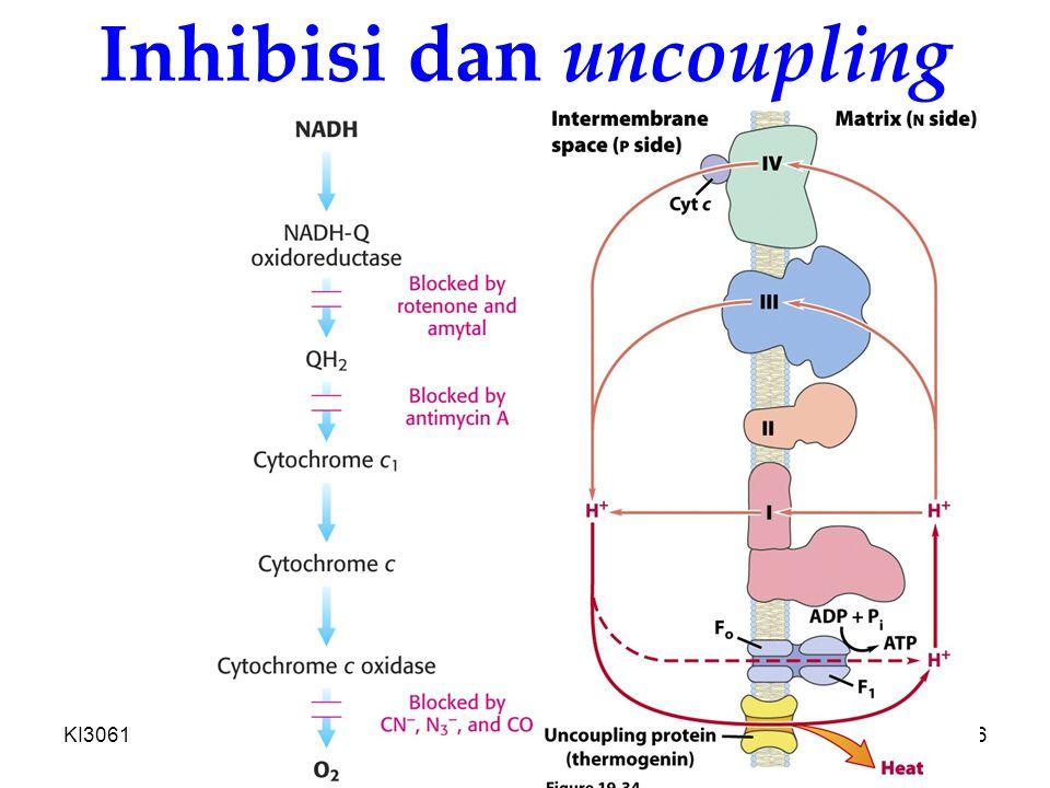 KI3061Zeily Nurachman26 Inhibisi dan uncoupling