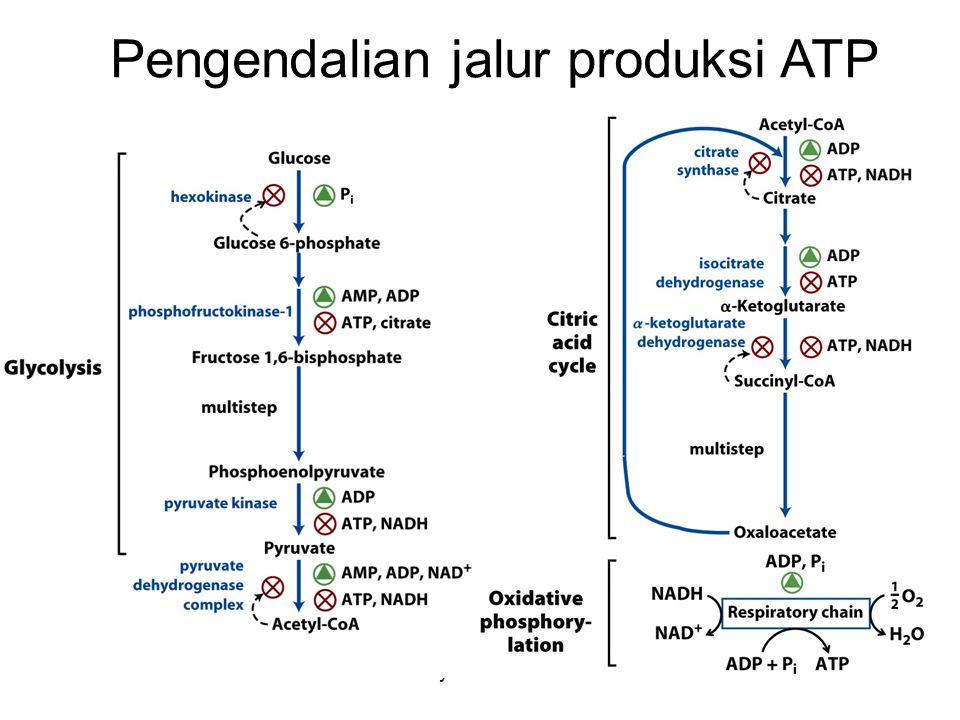KI3061Zeily Nurachman28 Pengendalian jalur produksi ATP