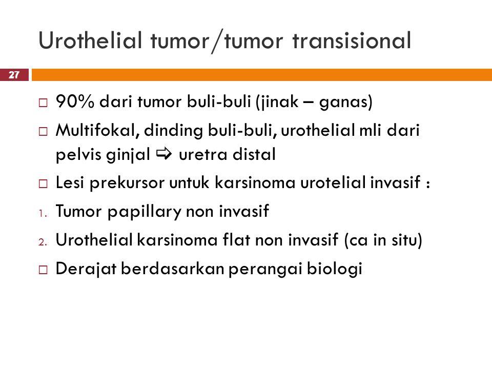 27 Urothelial tumor/tumor transisional 27  90% dari tumor buli-buli (jinak – ganas)  Multifokal, dinding buli-buli, urothelial mli dari pelvis ginja