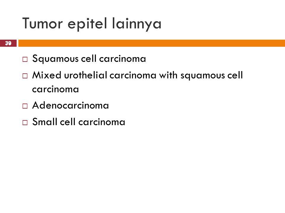 39 Tumor epitel lainnya 39  Squamous cell carcinoma  Mixed urothelial carcinoma with squamous cell carcinoma  Adenocarcinoma  Small cell carcinoma