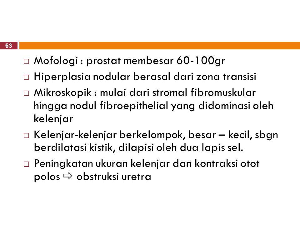 63  Mofologi : prostat membesar 60-100gr  Hiperplasia nodular berasal dari zona transisi  Mikroskopik : mulai dari stromal fibromuskular hingga nod