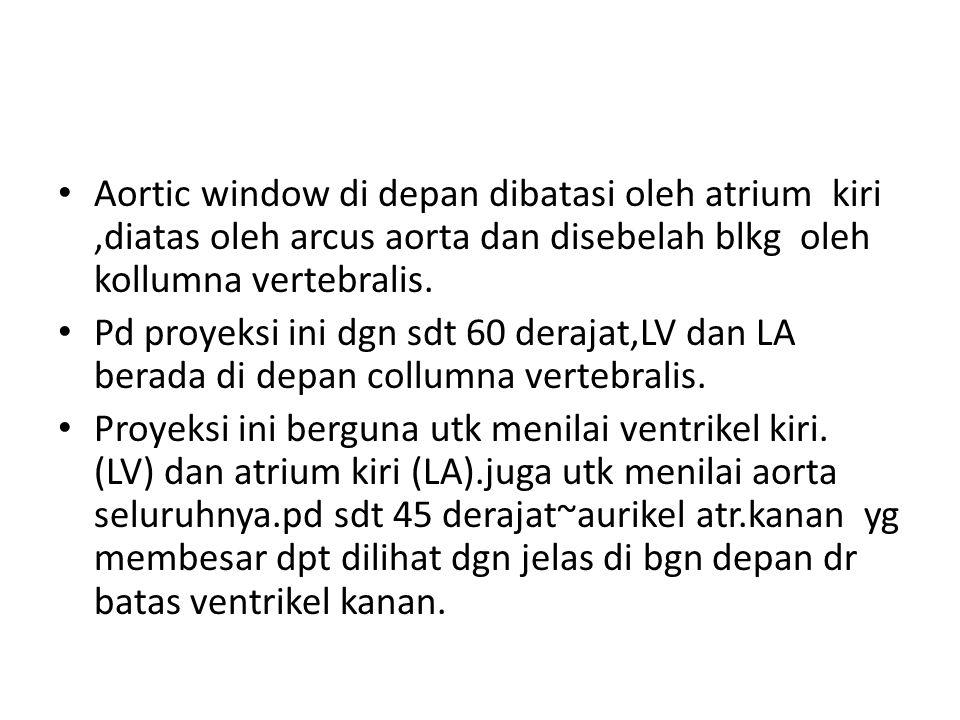 Aortic window di depan dibatasi oleh atrium kiri,diatas oleh arcus aorta dan disebelah blkg oleh kollumna vertebralis. Pd proyeksi ini dgn sdt 60 dera
