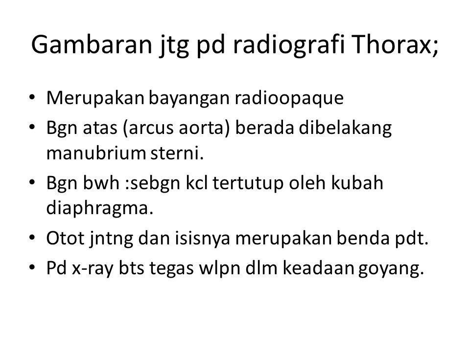 Gambaran jtg pd radiografi Thorax; Merupakan bayangan radioopaque Bgn atas (arcus aorta) berada dibelakang manubrium sterni. Bgn bwh :sebgn kcl tertut