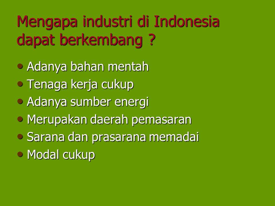 Mengapa industri di Indonesia dapat berkembang ? Adanya bahan mentah Adanya bahan mentah Tenaga kerja cukup Tenaga kerja cukup Adanya sumber energi Ad
