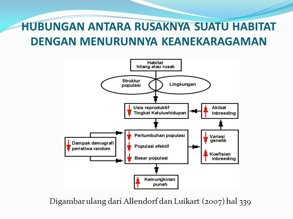 HUBUNGAN ANTARA RUSAKNYA SUATU HABITAT DENGAN MENURUNNYA KEANEKARAGAMAN Digambar ulang dari Allendorf dan Luikart (2007) hal 339