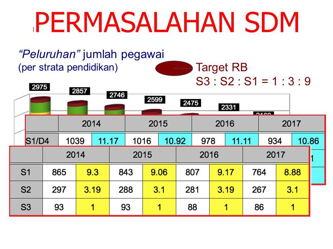"""l PERMASALAHAN SDM """"Peluruhan"""" jumlah pegawai (per strata pendidikan) Target RB S3 : S2 : S1 = 1 : 3 : 9"""