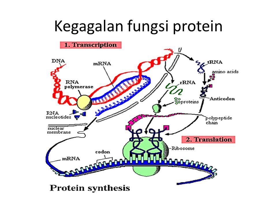 Kegagalan fungsi protein