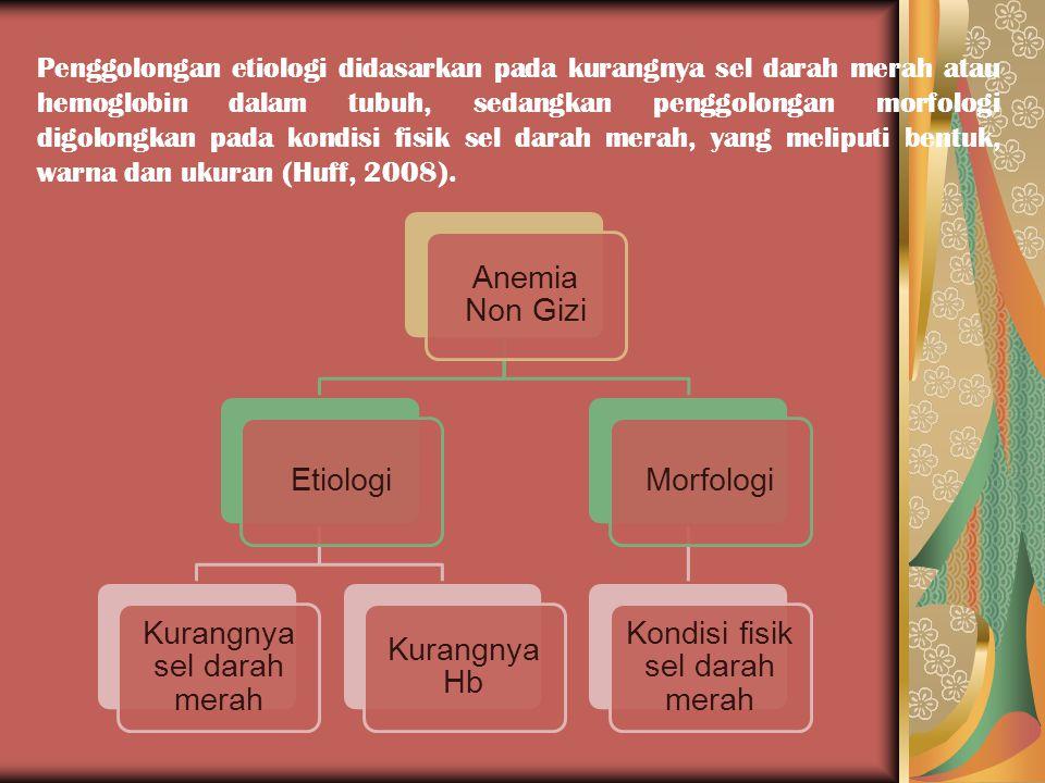Penggolongan etiologi didasarkan pada kurangnya sel darah merah atau hemoglobin dalam tubuh, sedangkan penggolongan morfologi digolongkan pada kondisi fisik sel darah merah, yang meliputi bentuk, warna dan ukuran (Huff, 2008).