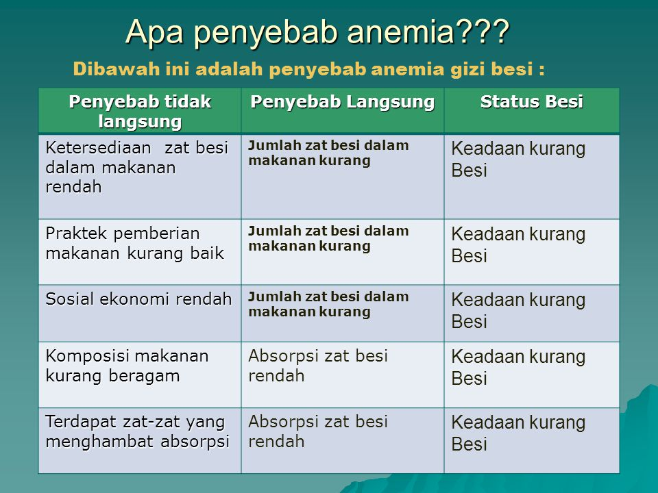 Apa penyebab anemia??? Penyebab tidak langsung Penyebab Langsung Status Besi Ketersediaan zat besi dalam makanan rendah Jumlah zat besi dalam makanan