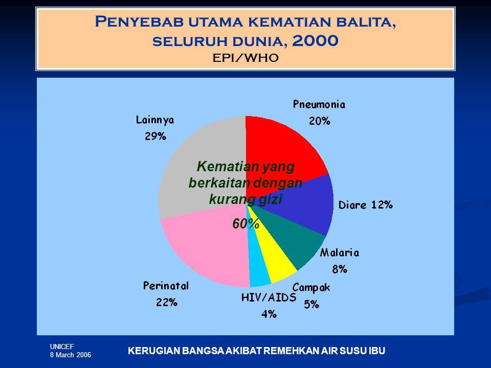 Penyebab utama kematian balita, seluruh dunia, 2000 EPI/WHO KERUGIAN BANGSA AKIBAT REMEHKAN AIR SUSU IBU UNICEF 8 March 2006 Kematian yang berkaitan dengan kurang gizi 60%