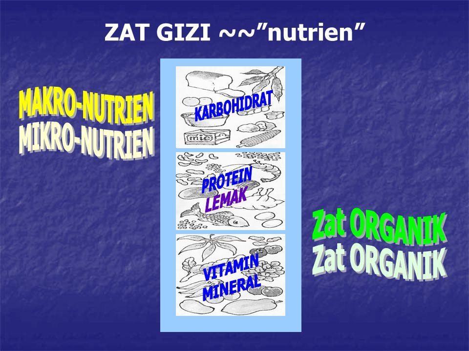 "ZAT GIZI ~~""nutrien"""